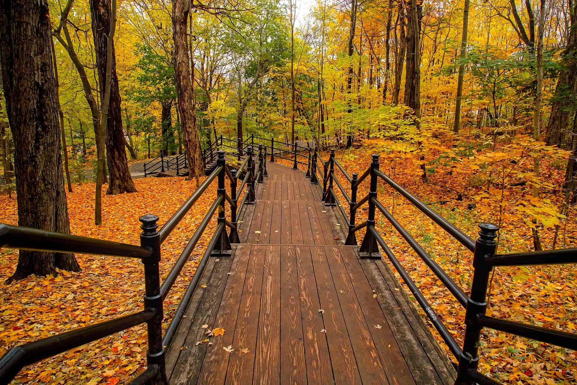 Foliage in Canada: i luoghi più belli dove vederlo e fotografarlo